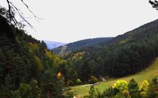 Sierra de Cebollera estrena el sábado un paseo por la reserva natural fluvial
