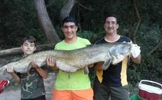 El monstruo del Ebro