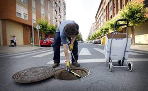 Logroño registra 413 avisos de plagas desde 2017
