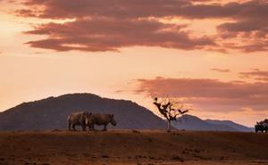 Sudáfrica, motivos de sobra para conocer un destino salvaje y cautivador