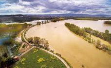 La CHE comienza el retranqueo de una mota de defensa del Ebro en Alfaro