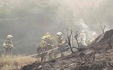 Los bomberos dominan el fuego en el término de 'La Mina' de Fuenmayor