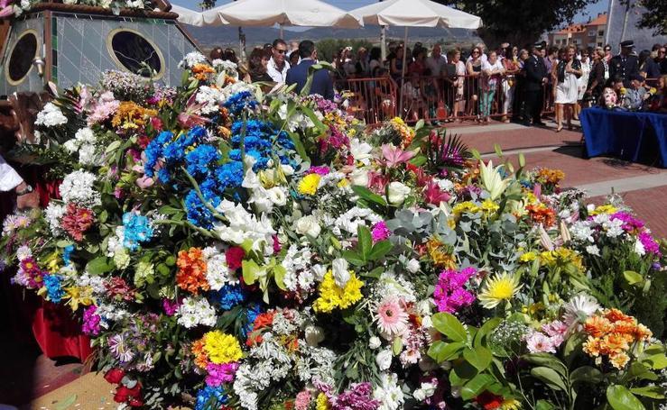 Ofrenda floral en Haro (I)