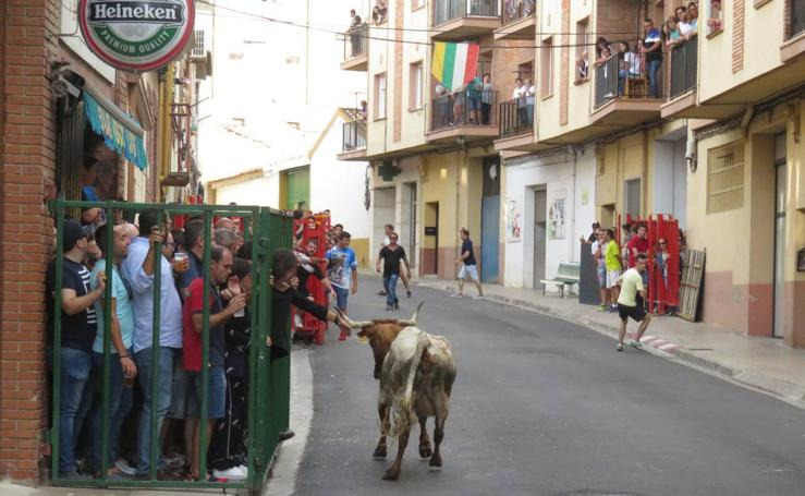 Alfaro despide sus fiestas por la Virgen del Burgo