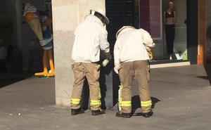 Los bomberos retiran un enjambre de abejas de una papelera en la Gran Vía