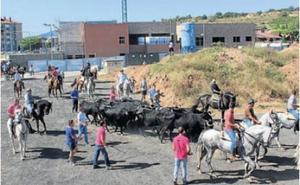 Villamediana alcanza el ecuador festivo entre varios concursos