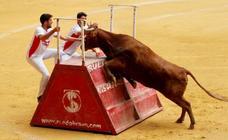 Alardes de valentía en las vaquillas