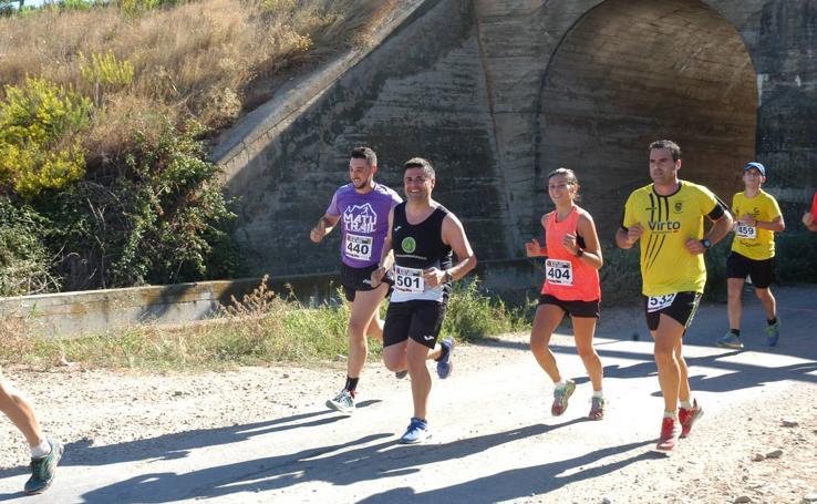 Segunda Etapa de la 10ª Ruta Jacobea del Ebro entre Alfaro y Rincón