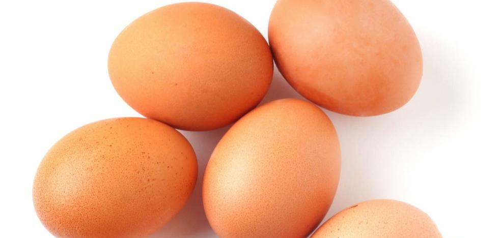 A huevo diario