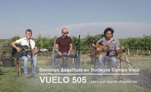 Nuevo vídeo de vuelo 505 entre viñedos