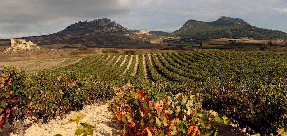 Románico y viñedo desde Tirgo