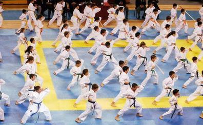 El CTD Adarraga contará con una nueva sala de artes marciales