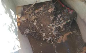 La Guindilla: Acequia que se desborda en Yagüe