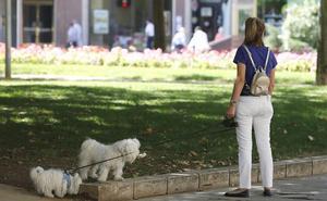 El PR+ propone incorporar educadores medioambientales para vigilar los parques