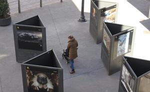 Exposición al aire libre en Arnedo