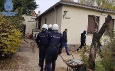 La Policía decomisa 728 plantas de marihuana en una casa en Albelda