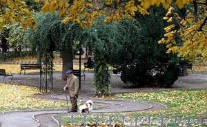 Logroño sumará 1.500 nuevos árboles en la próxima campaña de plantación