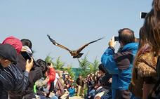 Tierra Rapaz se consolida como punto turístico con 35.577 visitantes