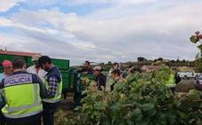 Diecisiete detenidos en Rioja Alavesa durante la campaña de inspección de la vendimia