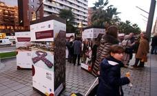 Exposición 40 años de Constitución, en Logroño