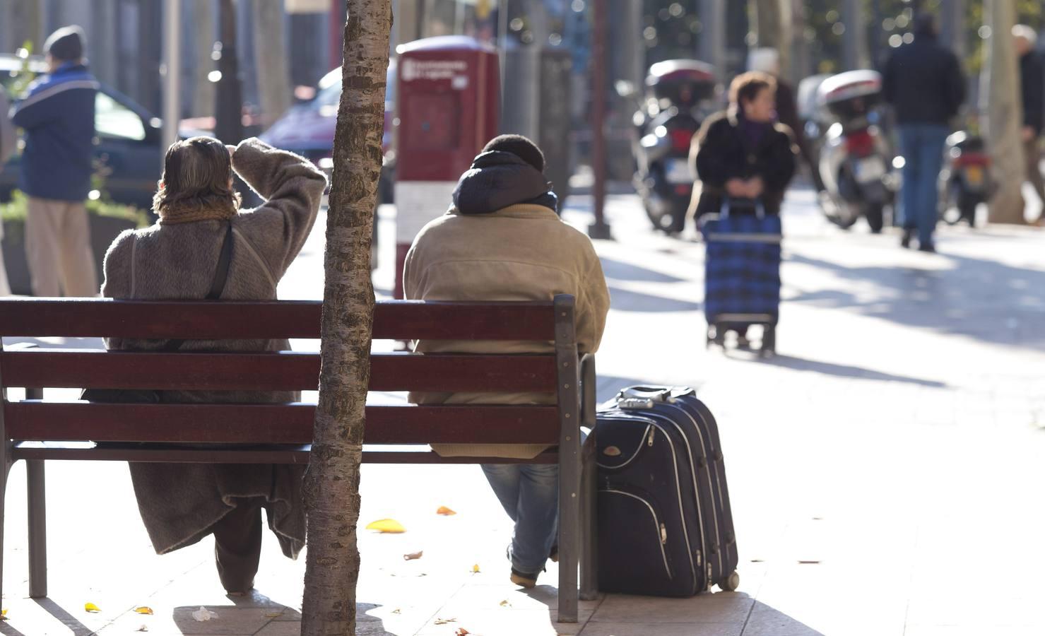 255 bancos nuevos para Logroño