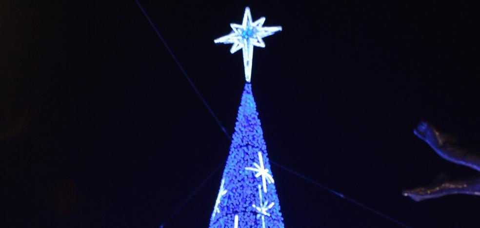 El árbol monumental se instalará en El Espolón y se inaugurará el día 15