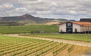 El Gaitero adquiere el cien por cien de Viñedos de Alfaro en Aldeanueva de Ebro