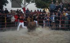 Fiestas de la Juventud en Rincón de Olivedo