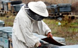 Apicultores riojanos se concentran «en defensa de la miel española»