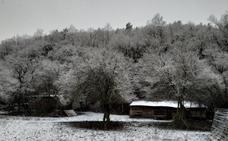 Llega la nieve (por fin)