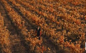 La Rioja, tierra de sueños