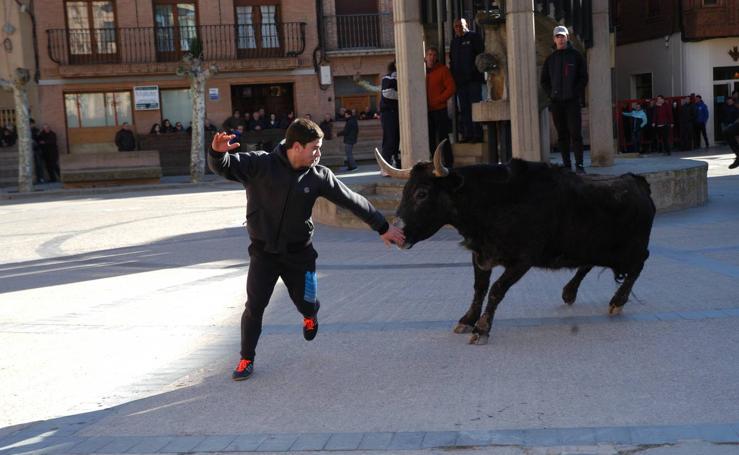 Fiestas de Aldeanueva: vaquillas, conciertos de Tierra Santa y Camela, mercado
