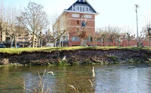 La CHE pide información para permitir la reparación de la ribera del Najerilla