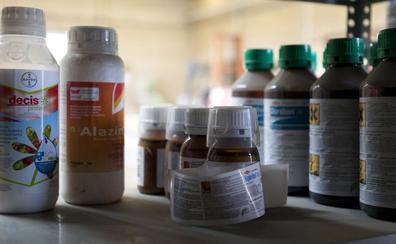 Santo Domingo convoca un curso para obtener el carné de aplicador manipulador de plaguicidas de uso fitosanitario