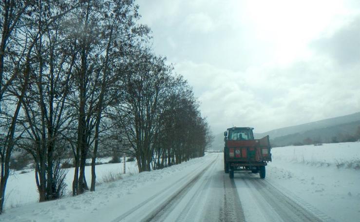 Domingo de nieve en La Rioja (III)