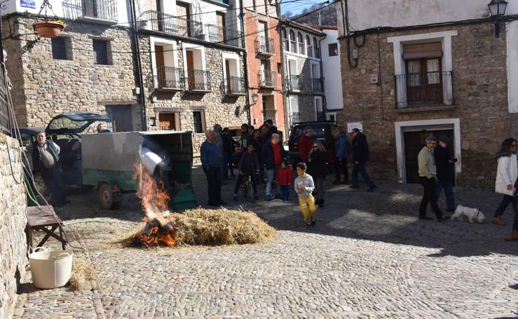 Jornadas de la Moraga en San Román