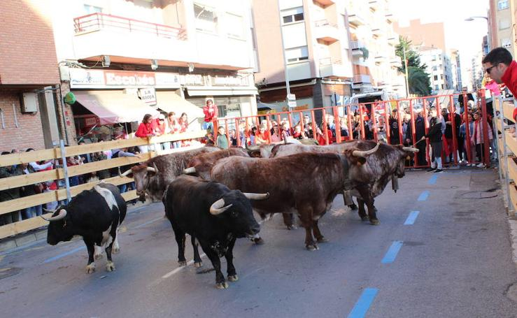 Vaquillas, cohete, degustaciones y mucho más en Calahorra