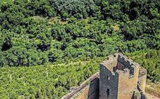 CVNE promete actuar «ya» sobre Davalillo y garantiza el acceso y el respeto al entorno