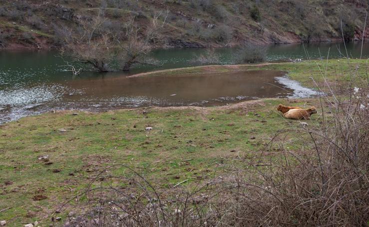 Estado del pantano de Mansilla y sus alrededores