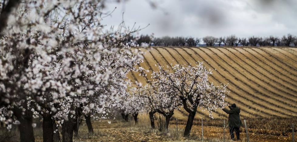¿Qué tiempo nos espera esta primavera en La Rioja?
