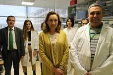 El CIBIR identifica un nuevo mecanismo implicado en el desarrollo de los tumores