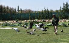 Un espacio único para las aves