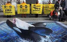 Greenpeace protesta en Moscú por las ballenas «encarceladas» en el Extremo Oriente ruso