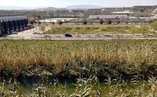 El estanque que aparece y desaparece