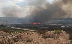 Controlado un incendio forestal en Pradejón