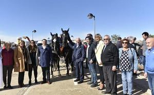 Los caballos de monta, protagonistas de la feria de ganado de Rincón de Soto