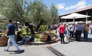 El enoturismo ha crecido en Rioja un 40% entre 2015 y 2018