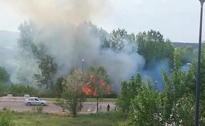Los bomberos extinguen un incendio en la ribera del Iregua en Albelda