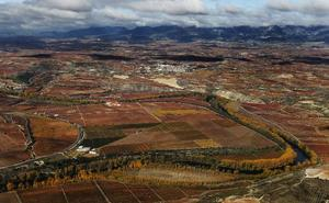 Casi un tercio de Rioja ya ha cambiado a una región climática cálida en los últimos 30 años