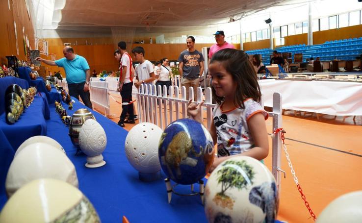 Feria de coleccionismo Trueque en Calahorra